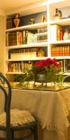 Salón: Biblioteca Y Zona De Juegos
